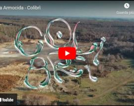 copertina del video diAndrea Armocida, Colibrì