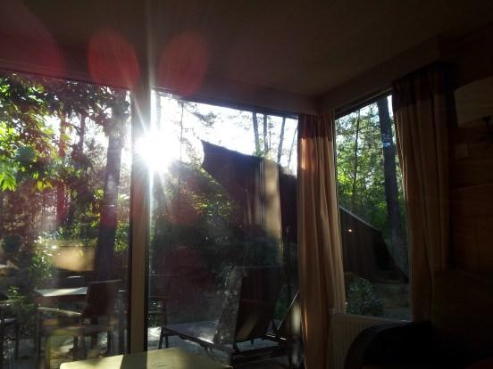 La terrasse et la vue