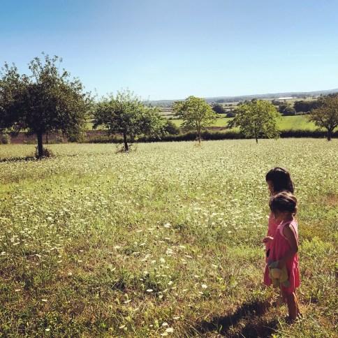 vacances a la campagne