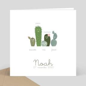 famille-cactus