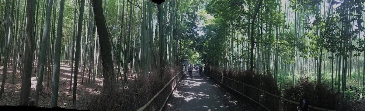 #JaponATB: Kioto y el bosque de bambú de Arashiyama