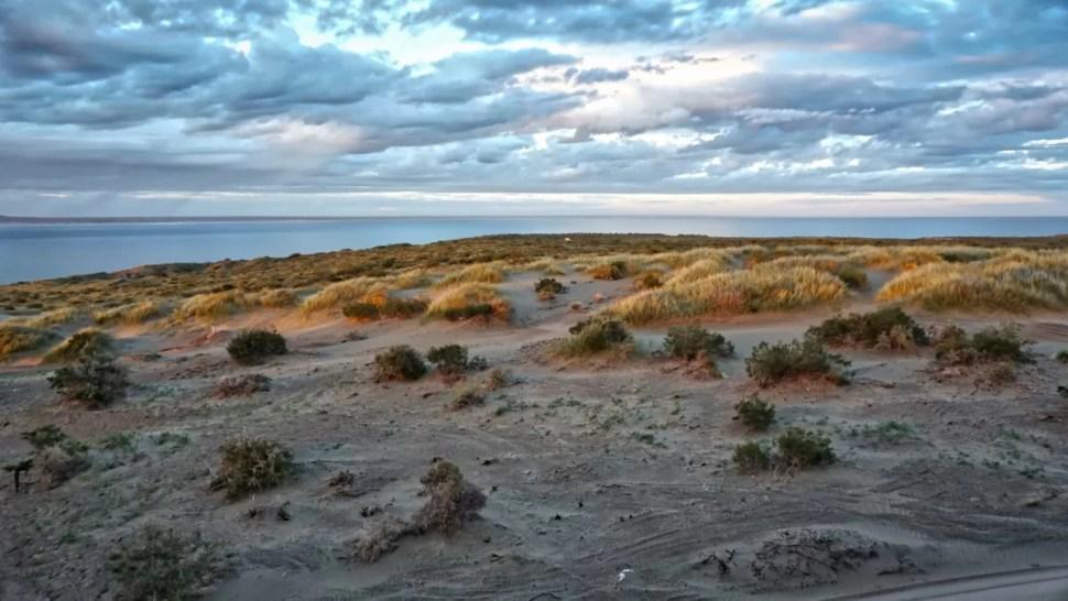 Médanos, Punta Este, Puerto Madryn