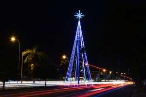 Prefeitura inicia instalação de árvores natalinas nos bairros da Capital