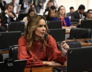 Daniella Ribeiro vota favorável a PL que garante auxílio a informais e merenda para famílias durante pandemia de coronavírus no país