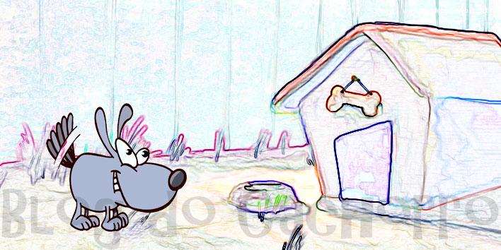 Que tal construir uma casinha sem custos para seu cachorro?