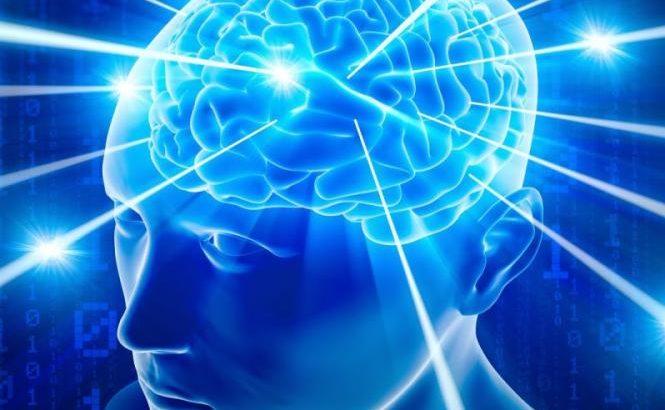 Resultado de imagem para Lideres cerebro