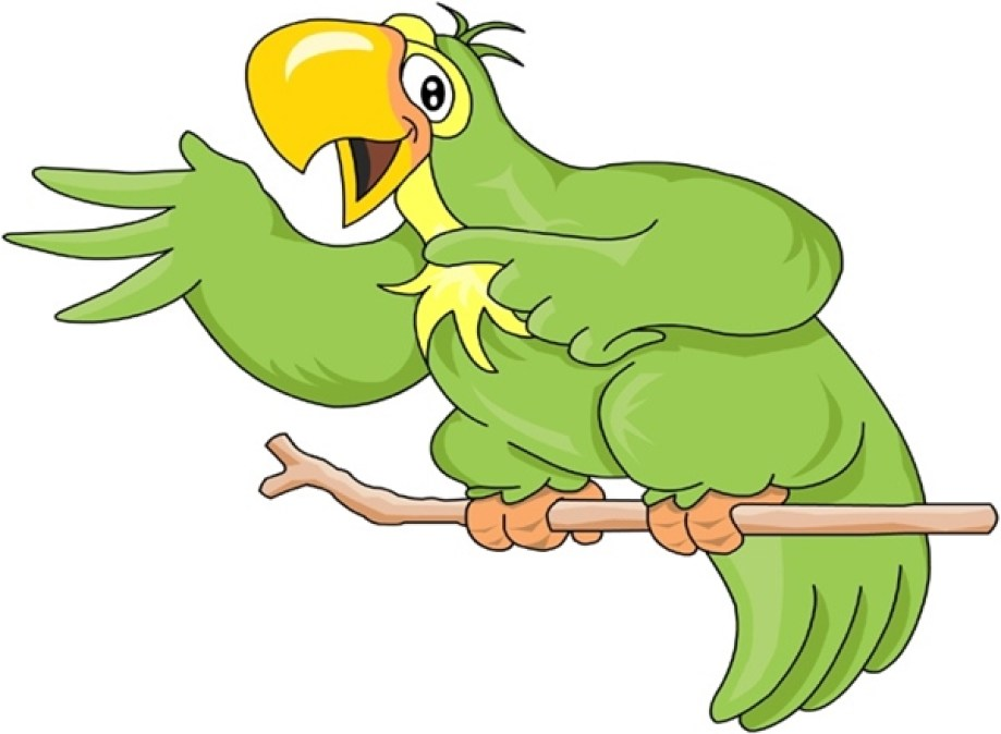 papagaio2 Crônica da Família: Minha Irmã e o Papagaio