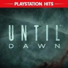 Until Dawn™