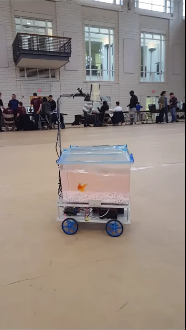 Just Keep Swimming mobile fish tank heads whichever the direction its resident does
