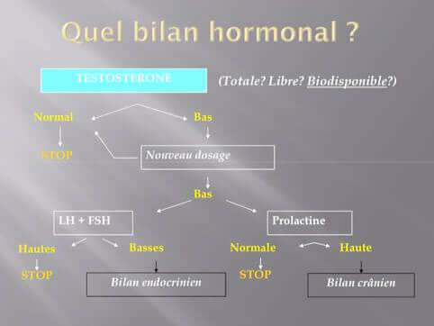 d-schema decisionnel pour la prescription d un bilan hormonal d une dysfonction erectile