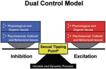 Dual control model