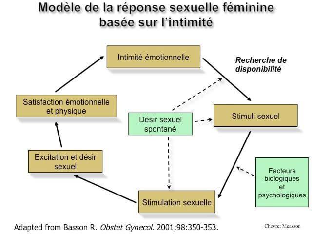 Modele de la reponse sexuelle feminine basee sur l'intimité