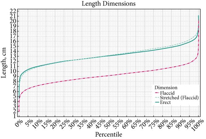 Distribution statistique de la taille du pénis au repos ou en érection à partir de 15500 mesures