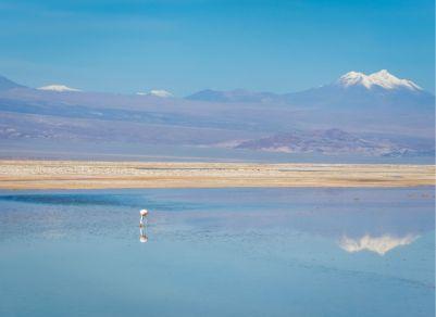 deserto do Atacama_Salar