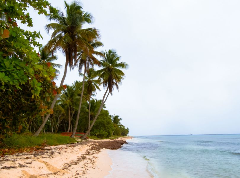 Ilha Saona_caribe