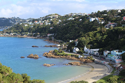 Scorching Bay Wellington