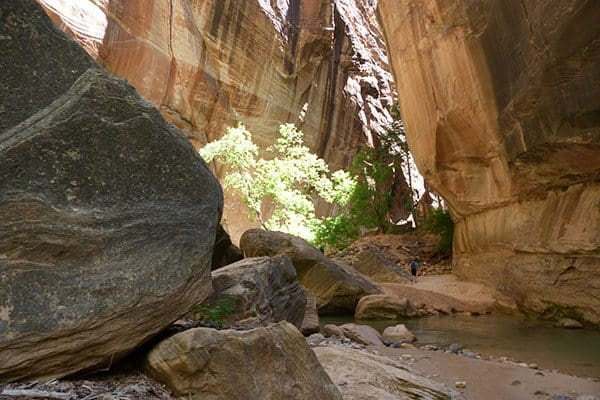 Narrows, Zion