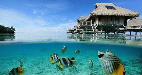 Hilton overwater bungalows Bora Bora