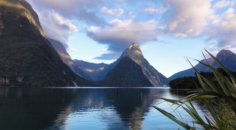 Milford Sound Holland America