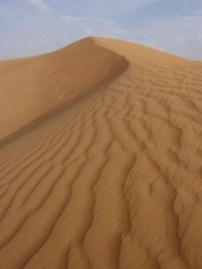 Dubai sand dune