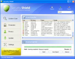 Security Shield Screenshot