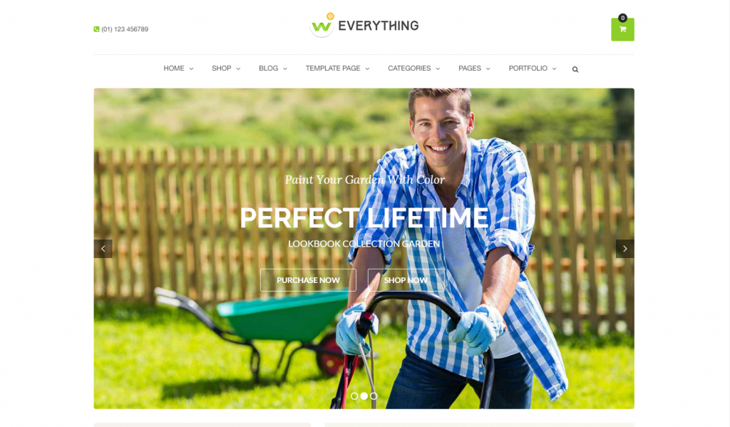 Everything- WooComerce WordPress Theme
