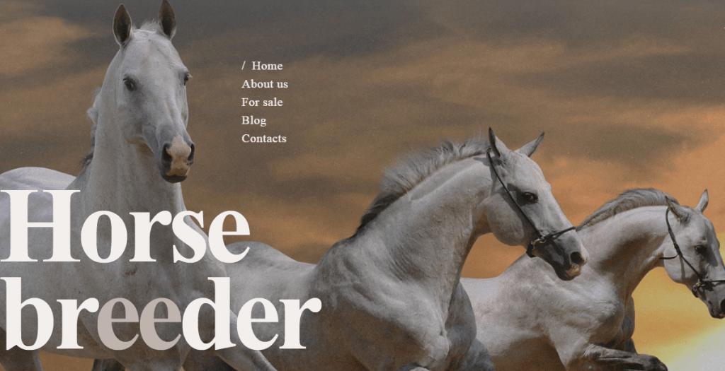 Horse Breed WordPress Theme