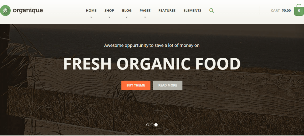 Food Store WP Theme