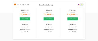 bigrock code- linux reseller hosting