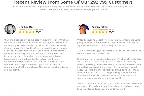 elegant themes review customer testimonial