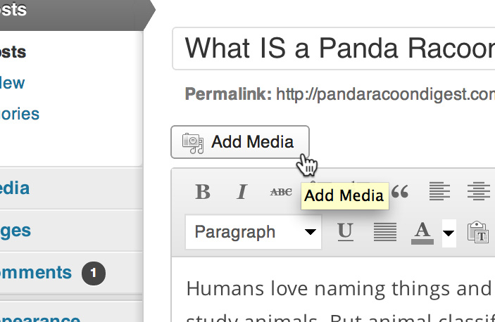 Add media In WordPress