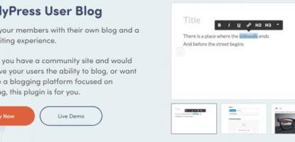 BuddyPress User Blog • BuddyBoss
