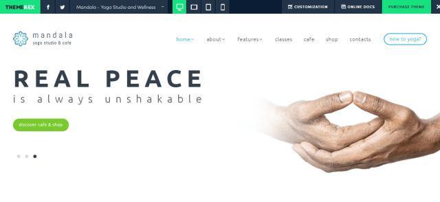 Mandala - WordPress Sports Theme