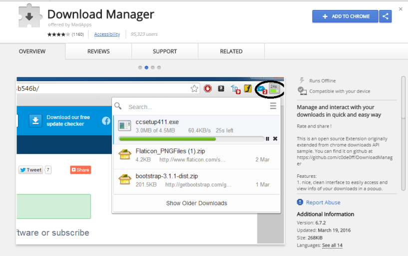 Download Manager Extension