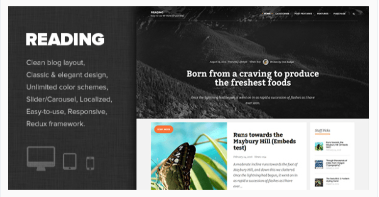 Reading- WordPress Blog Themes