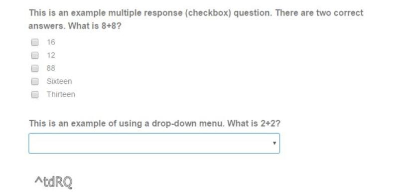 WordPress Quiz Plugins- Quiz and Survey Master