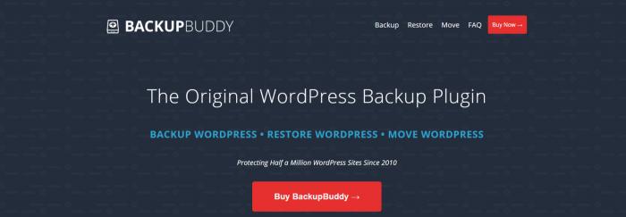 Create A Blog Easily- BackupBuddy Plugin