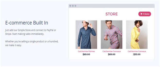 coupon codes for Strikingly