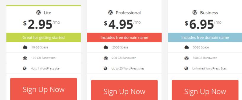 SteadyCloud Review-Wordpress Hosting pricing