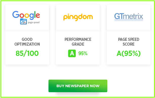 Newspaper Theme Review- Page Loading Score