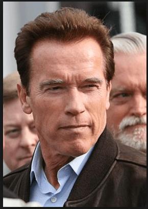 Arnold Schwanneger- Best Motivational Speakers