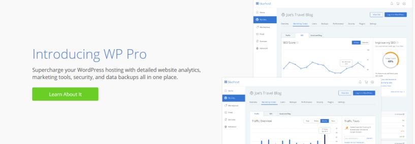 BlueHost vs Liquid Web Comparison- Optimized WordPress Hosting