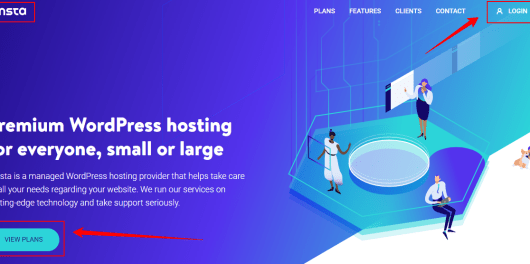 Kinsta - Managed WordPress Hosting for Everyone Small or Large