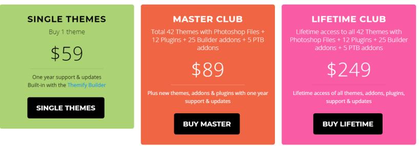 Shoppe Theme Review- Pricing Plan
