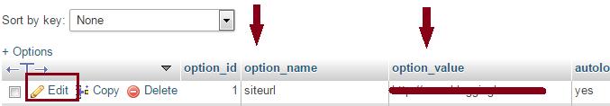 change wordpress site url in database
