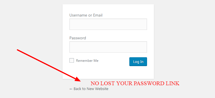 remove lost your password link