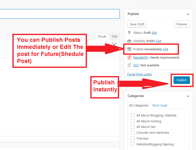 how-to-publish-post-in-wordpress