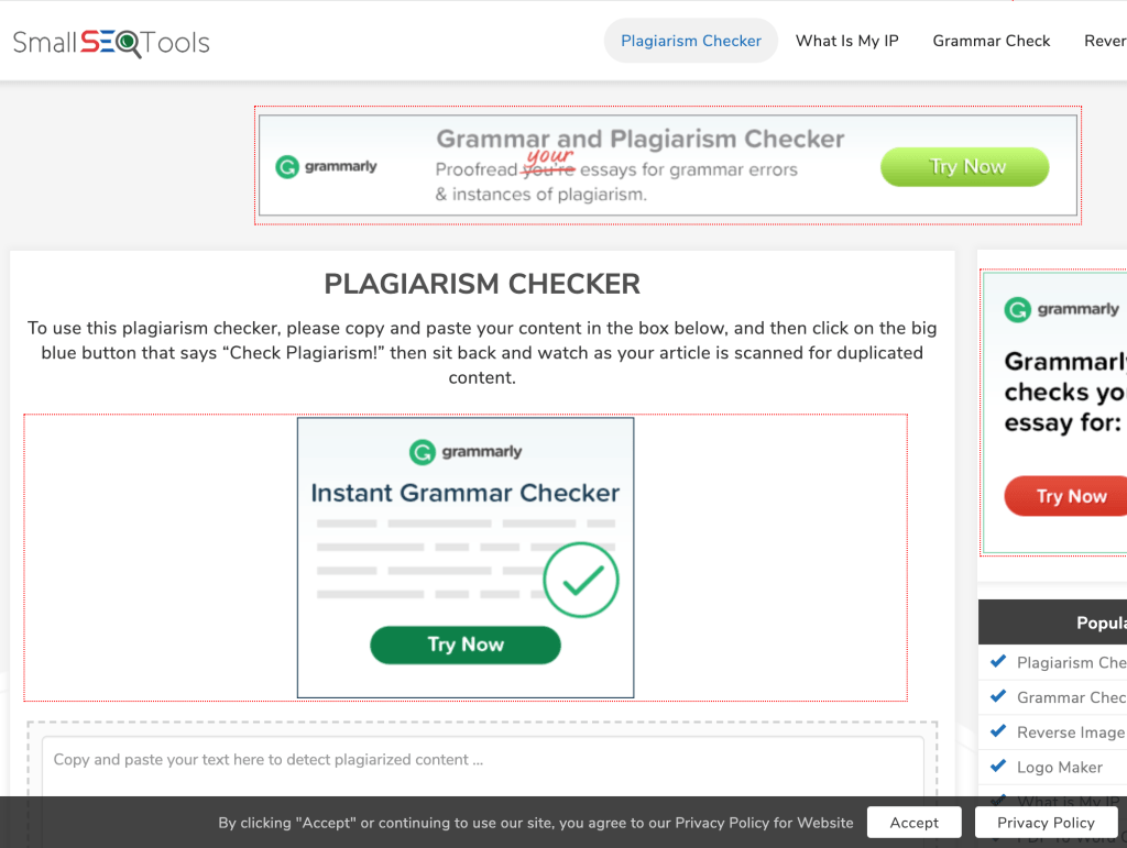 Small SEO Free Online Plagiarism Checker