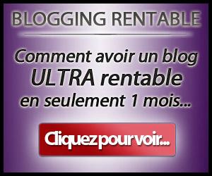 banniere_br300x250