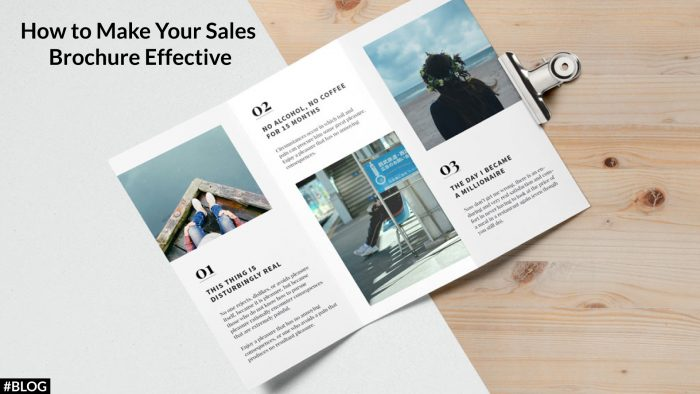 How to Make an Effective Sales Brochure?